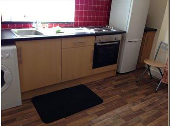 1 bedroom flat near Aberdeen uni available July £500 pcm