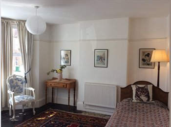 Light & pleasant garden view double sized room for single...