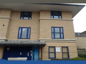 EasyRoommate UK -  Large Double Bed room in New Spacious 3 bed flat - Milton Keynes, Milton Keynes - £525 pcm