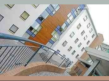 EasyRoommate UK - Purpose built Student Accommodation - Dundee, Dundee - £108 pcm