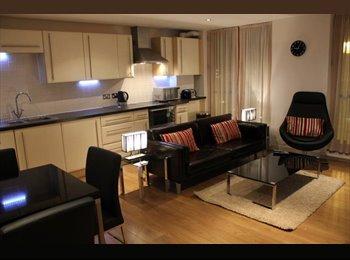 Large En-suite Bedroom in a Fantastic Modern Flat - Perfect...