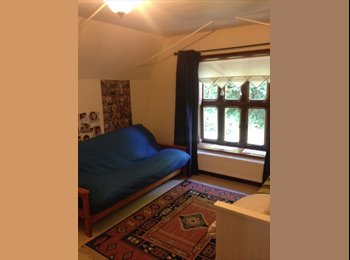 EasyRoommate UK - Nice and species room in very nice and quiet area - Stoke Holy Cross, Norwich and South Norfolk - £520 pcm