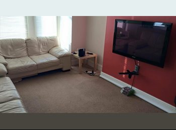 EasyRoommate UK - Spacious Room Available in Mutley, Plymouth!  - Mutley, Plymouth - £392 pcm