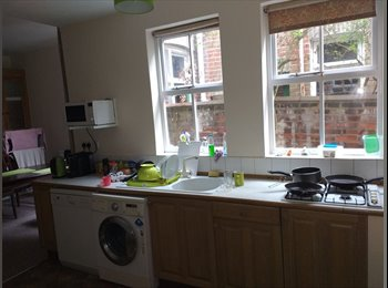 EasyRoommate UK - Room Norwich - Norwich, Norwich and South Norfolk - £450 pcm