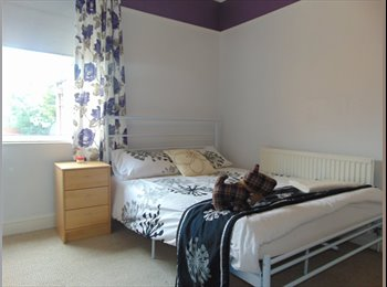 EasyRoommate UK - Stylish double in prof houseshare in Leicester, Leicester - £380 pcm