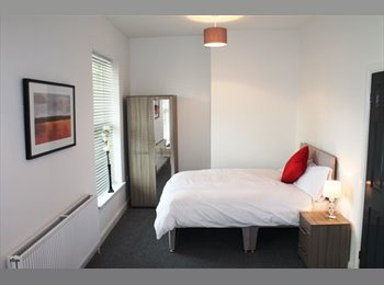 EasyRoommate UK - SUPERB En Suite bedroom in house share, Botanic - £390 pcm