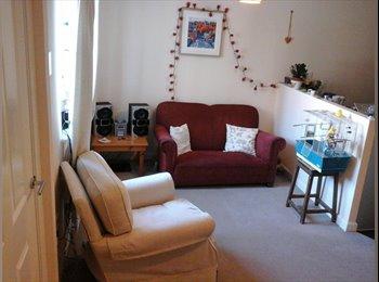 Single room in lovely modern house in Horfield