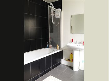 EasyRoommate UK - Double bedroom near city centre, ALL BILLS INCLUDED - Kensington, Liverpool - £280 pcm