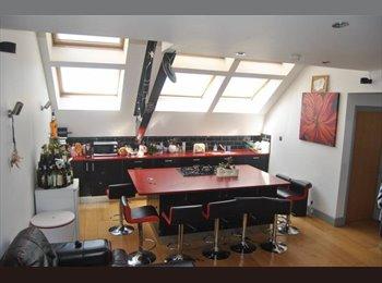 Double room in willesden green/dollis hill