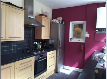 EasyRoommate UK - Lovely bedrooms - from £280 INC ALL BILLS! - Braunstone, Leicester - £299 pcm