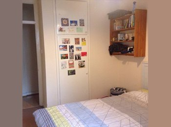 Double room in friendly flat share in Clapham