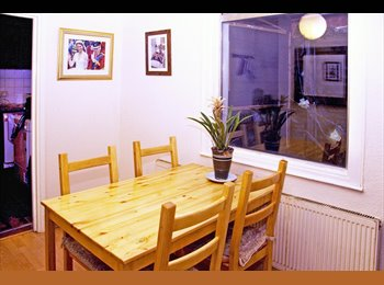 EasyRoommate UK - Great double room 25 minutes to Central London - Turnpike Lane, London - £520 pcm