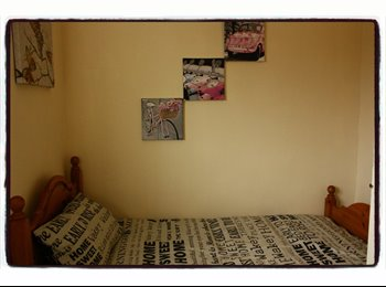 Lovely, single room to rent in a friendly family house
