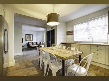 Rooms available for student in fantastic new development
