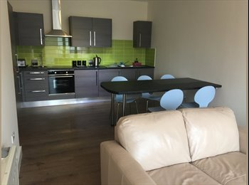 EasyRoommate UK - 5 BEDROOM CITY CENTER HOUSE - WEST ST.LOCATION - Ecclesall, Sheffield - £400 pcm