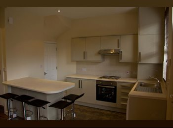 EasyRoommate UK - House in central student zone! Perfect location for uni and great flatmates! - Hyde Park, Leeds - £484 pcm