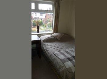 EasyRoommate UK - Double room Newcastle-u-Lyme  - Newcastle-under-Lyme, Newcastle under Lyme - £320 pcm