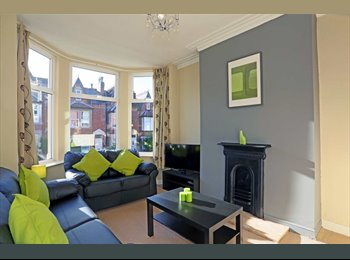 Roundhay double room in stylish Professional houseshare!