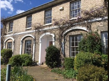 EasyRoommate UK - Large Double Rooms from 300 all bills included - Chelmsford, Chelmsford - £300 pcm