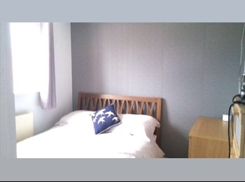 Room to rent in gorgeous house
