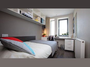 1 Double Bed Ensuite Room at Great Location for Full Time...