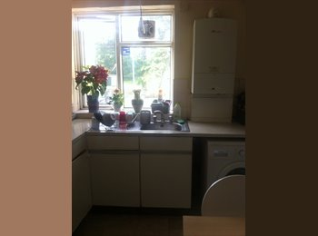 Bright double room in friendly flat share in Kingston Hill,...