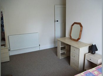 EasyRoommate UK - Large double room nr City Centre £280pm incl Wifi available 23rd July, Plymouth - £280 pcm