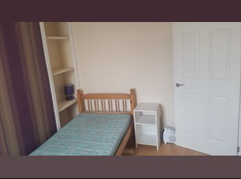 EasyRoommate UK - Room to rent in central Newton Abbot location, Newton Abbot - £350 pcm