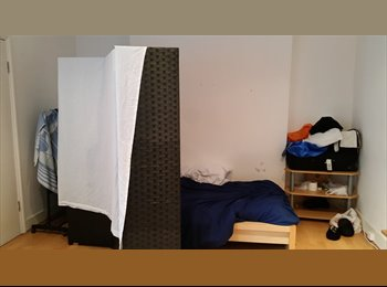 Great  room in Camden Town