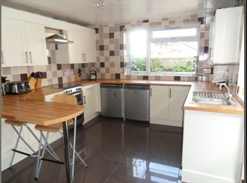 EasyRoommate UK - Huge Victorian 6 Bedroom student house, Plymouth - £85 pcm