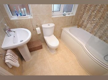 EasyRoommate UK - Large double room in nicely presented home, Birmingham - £450 pcm