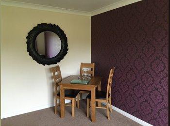 Spacious flat, quiet location