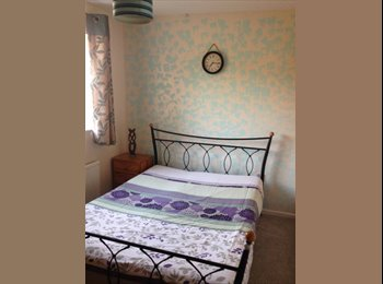 Newly decorated double room to let