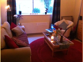 EasyRoommate UK - Bright Sunny Double Room in Spacious Appartment, Bath and NE Somerset - £390 pcm