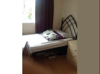 EasyRoommate UK - Good sized single room, lovely house, near to Talbot campus and Winton highstreet., Bournemouth - £340 pcm