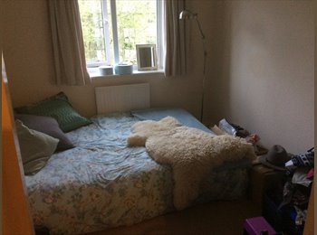 EasyRoommate UK - Double bedroom to rent ASAP in lovely house by river , Reading - £420 pcm