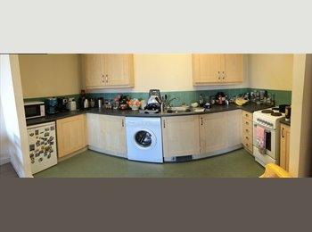EasyRoommate UK - 2 bedroom flat on London Road, Liverpool - £295 pcm