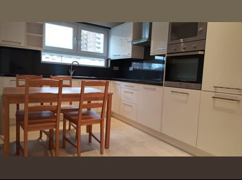 2 X single room in split level newly refurbished flat
