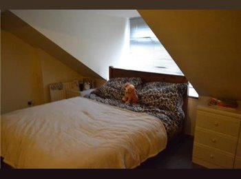 EasyRoommate UK - Spacious Double Room - Selly Oak B29, Birmingham - £355 pcm