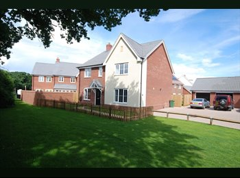EasyRoommate UK - Spacious, Quiet, Double Rooms, in new House, Taverham - £500 pcm