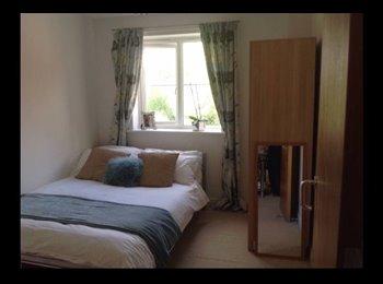 Jericho bright double room