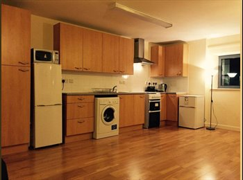 EasyRoommate UK - Warm and brightly lit double room in Old Street, London - £900 pcm