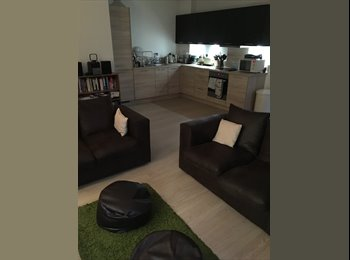 EasyRoommate UK - Looking for a friendly housemate!, London - £800 pcm