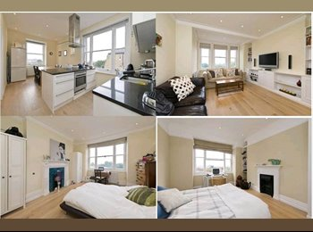 EasyRoommate UK - Beautiful Top level flat in amazing Castlenau Mansions, London - £700 pcm