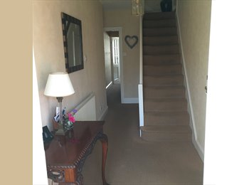 EasyRoommate UK - Double room in a big house, Oxford - £550 pcm