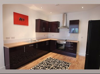 EasyRoommate UK - One of the best STUDENT houses in Cardiff! , Cardiff - £350 pcm