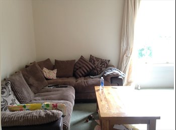 EasyRoommate UK - Spare bedroom in 3 bed flat near Broomhill, Sheffield - £320 pcm