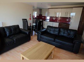 EasyRoommate UK - Student flatmate wanted , modern flat ecclesall road ., Sheffield - £380 pcm