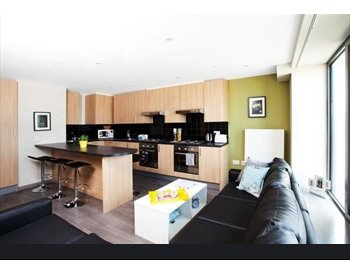 Ensuite student room, overlooking Olympic Park