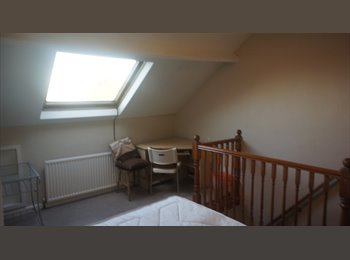 NICE DOUBLE ROOM IN CROOKES S10 £300 PCM AVAILABLE...